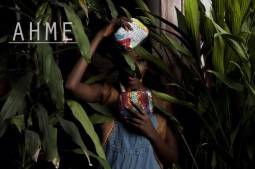 AHME-2016-